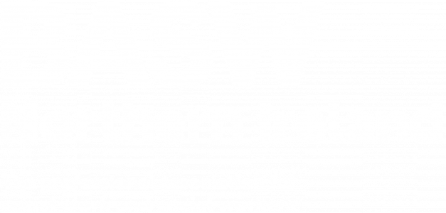 BASW Northern Ireland white logo
