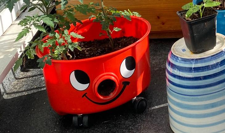 Henry the hoover used as a plant pot