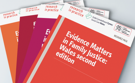 Evidence Matters in Family Justice